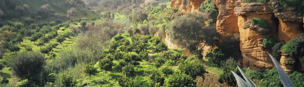 Sicilia – verdens flotteste øy
